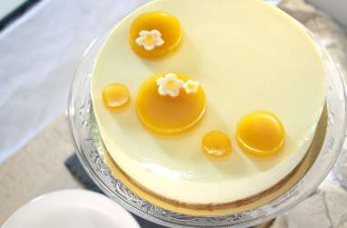 Entremets mangue passion insert framboise