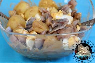 Pommes de terre froides aux œufs et harengs fumés
