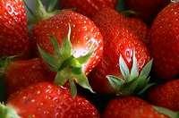 Chaud-froid de fraises au porto