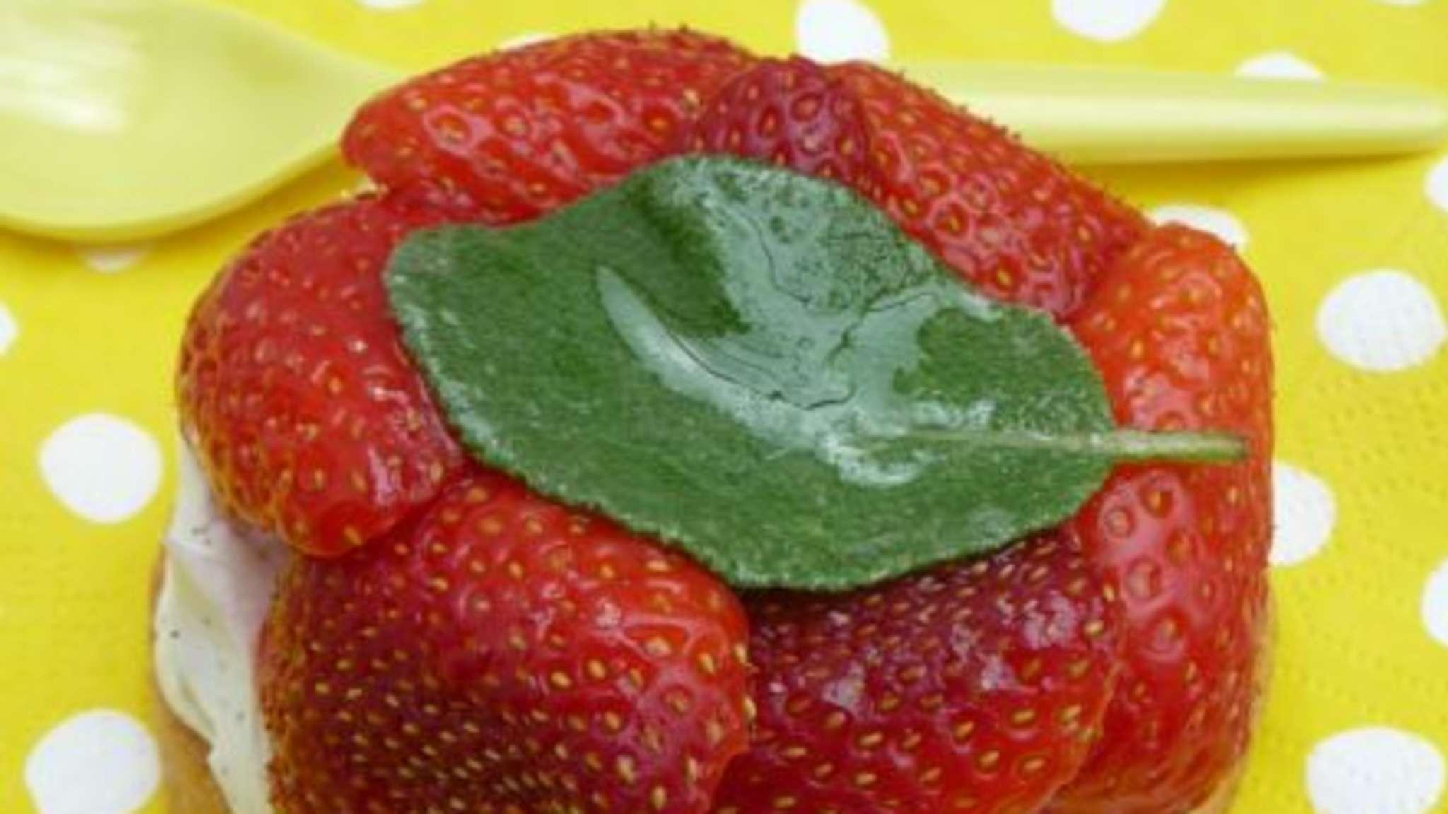 B.A.C. N°3 : Tartes aux fruits de saison