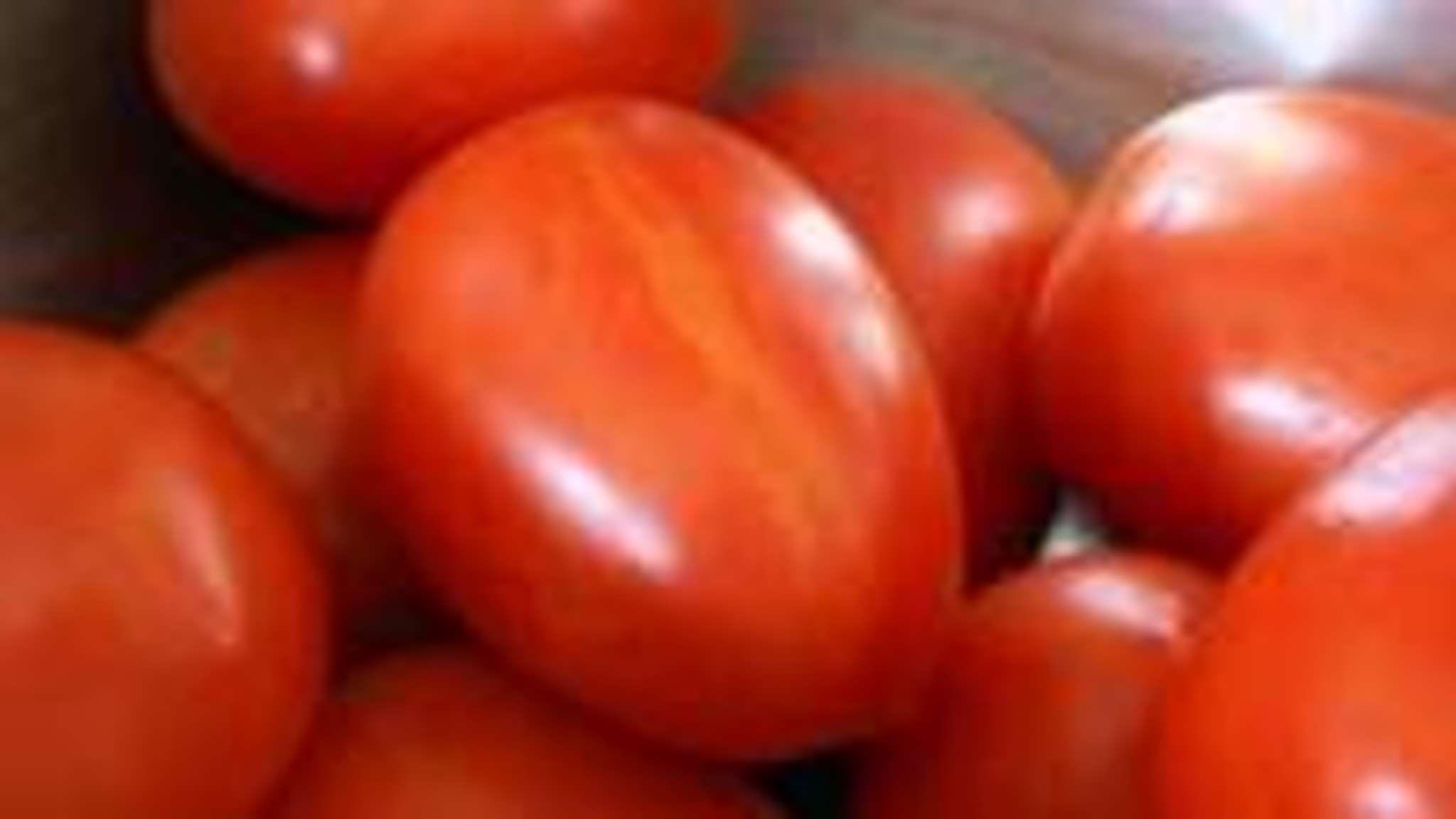 épépiner et concasser des tomates
