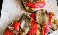 Crostino aux tomates vertes poêlés, pleurotes et mozzarella