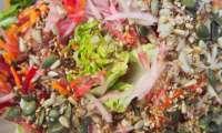 Salade d'automne aux graines