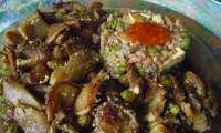 Pleurotes poêlées à la crème vegan de thym et kasha au tofu fumé
