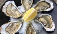 Vidéo : ouvrir les huîtres facilement