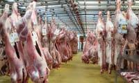 Abattage des animaux de boucherie