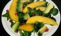 Salade de mâches mangue-avocat
