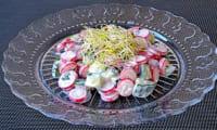 Salade crémeuse aux radis roses et au concombre