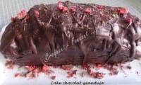 Cake chocolat-gianduja