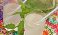 LIMONADE Citron vert Menthe