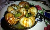 Escargots en persillade à la bourguignonne, en coquille