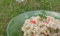 Risotto coloré fenouil et légumes