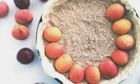 Tarte Abricots Quetsches sur lit d'amandes