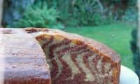 Gâteau Zébré Chocolat Vanille