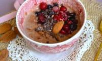 Pudding vegan protéiné à l'avoine germée, cacao et fruits rouges