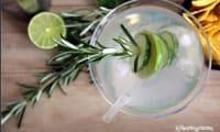 Gin infusé au concombre , citron vert et romarin