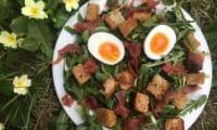 La salade de pissenlits parfaite