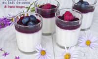 Panna cotta au lait de coco et fruits rouges