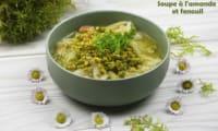 Soupe amande et fenouil et son topping