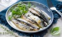 Sardines confites au citron et à l'huile d'olive