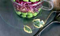 Salade de chou rouge aux pommes et edamame