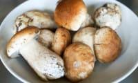 Nettoyer les champignons