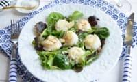 Salade aux saint-jacques rôties