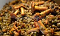 Lentilles aux Chanterelles