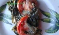 Gratin de chicorée à la tomate et fromage