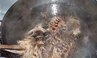 Plumer par immersion une poule faisane