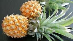 Y a du soleil et des ananas !