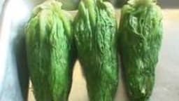 Je suis une salade, et toi, l'es-tu ?