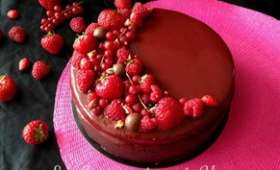 Entremets fruits rouge et chocolat noir