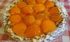 Tarte sablée noisette, compotée d'abricot et abricots