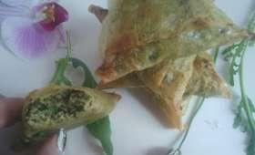 Samoussas au boeuf épinards et oignons