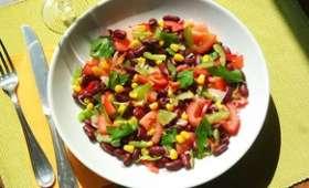 Salade d'été tomates, poivrons et haricots rouges