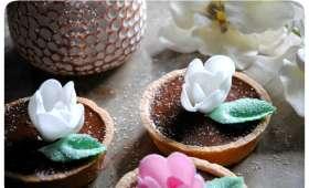 Tartelettes au chocolat au lait et fleur de sel