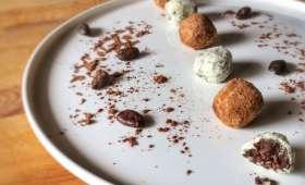 Truffes choco-wasabi - Cœur de fève cacao pur
