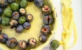 Tarte prunes reine claude et figues