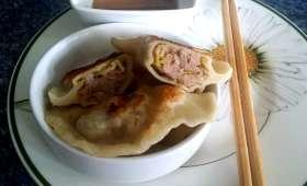Raviolis chinois au porc et au poireau