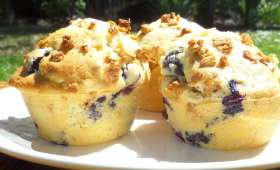 Muffins aux myrtilles noix de coco et muesli