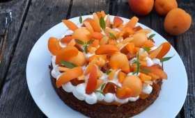 Fantastik melon, abricots, verveine citron et amandes