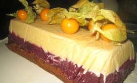 Bûche glacée vanille, myrtille et génoise au pain d'épices