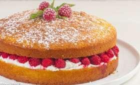 Gâteau rapide framboises ricotta