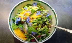 Salade d'oranges et fenouil avec vinaigrette à l'harissa
