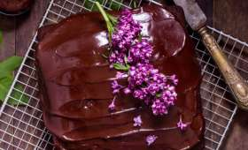 Gâteau au chocolat facile et moelleux