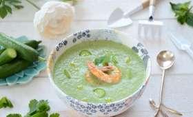 Soupe froide concombre, fromage de chèvre et crevettes