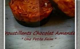 Croustillants chocolat amandes
