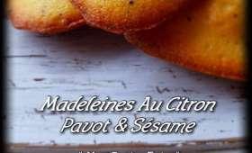 Madeleines au citron, pavot et sésame