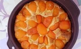 Gâteau aux abricots à la ricotta